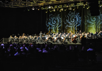 The Royal Philharmonic Orchestra (17)