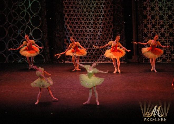 Kremlin Ballet (8)