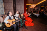 Flamenco night (11)