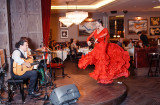 Flamenco night (13)