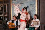 Flamenco night (23)