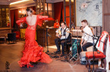 Flamenco night (7)