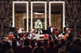 Berlin Philharmonic String Quintet (41)