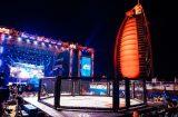 Parus 2019 - Day 4 - MMA (39)
